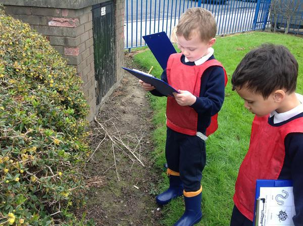 The children recording which mini beasts they find