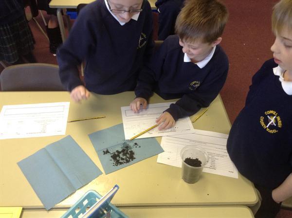 Investigating Soils