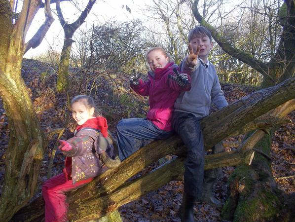 Fun at Forest School in Autumn Term -Tree climbing
