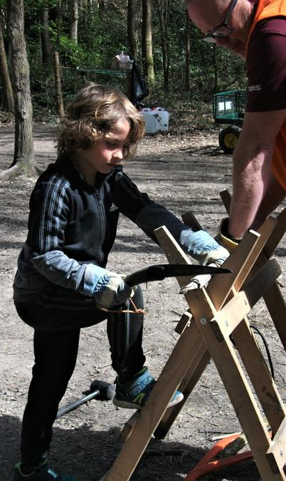 Getting to grips with the Laplander folding saw