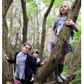 Getting the whole family involved in exploring our Forest School woodland