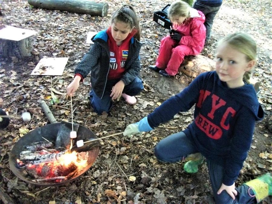Forest School = Toasted Marshmallows. Basic maths!