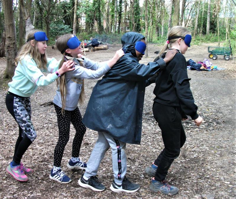 On the blindfold march through the woods