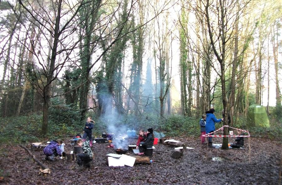 Our sunny, if chilly, winter Forest School