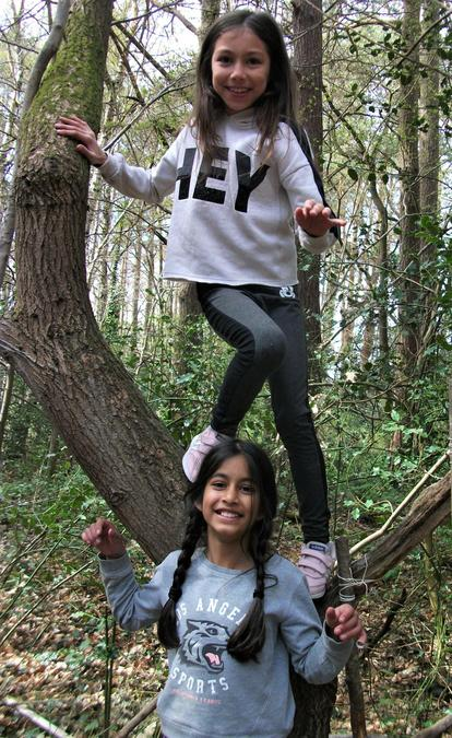 The perfect Forest School photo :-)