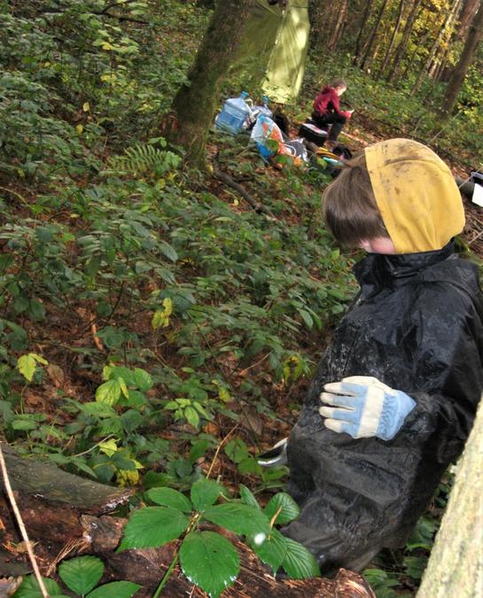 Choosing brambles to make survival rope