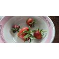 Louisa's homegrown strawberries - Yummy!