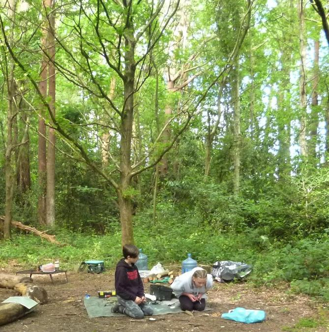 Making mini fires in the summer forest