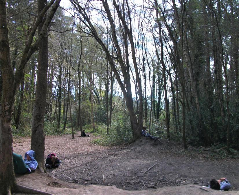 Forest School 'sit spot' listening to the woodland birds