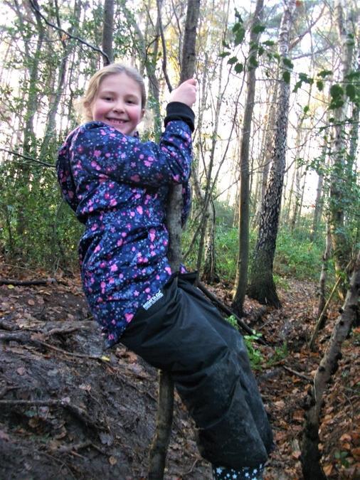 Swinging around on a woodland sapling