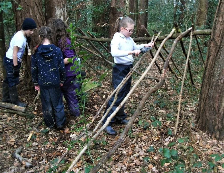 Finding new bugs while making a den