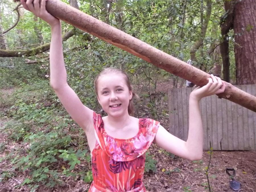 Olympian effort to carry BIG sticks for den building
