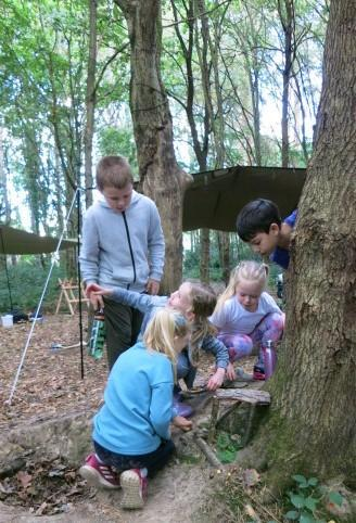 Sharing ideas for fairy house
