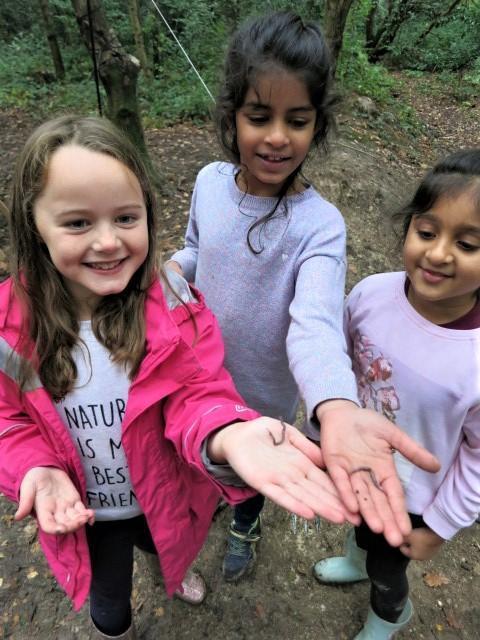We found worms!