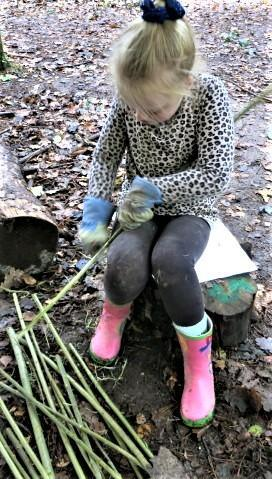 Using a peeler to strip willow bark