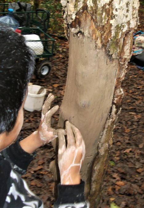 Pasting smooth mud onto rough tree bark