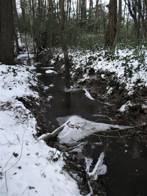 Ditch filled with icy water!