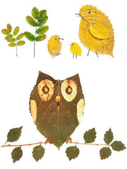 Leaf Birds