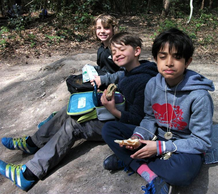 Lunch in the woodland sunshine. Perfect!