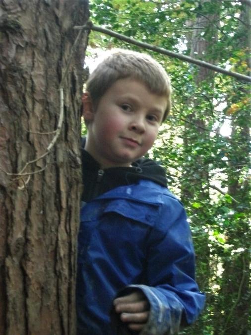 Exploring the autumn woodland