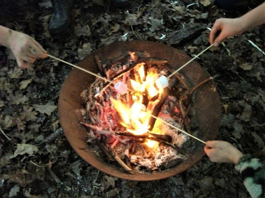 Hot, gooey marshmallow fun