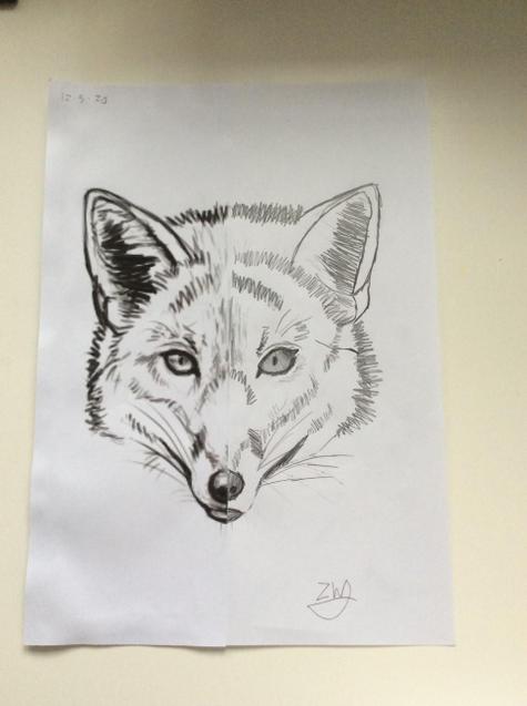 Zach's art- brilliant!
