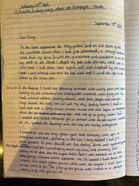 Lucina's diary entry. Wow, good job Luce!