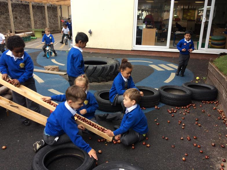 Exploring with conkers.