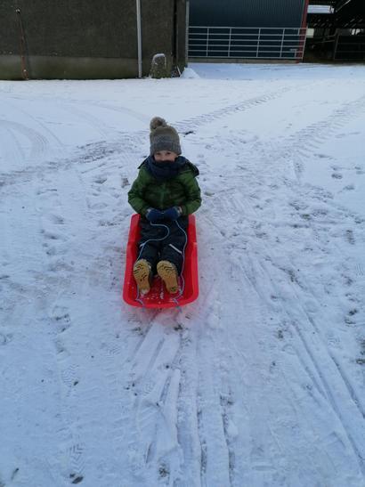 Sam having great fun on his sleigh!