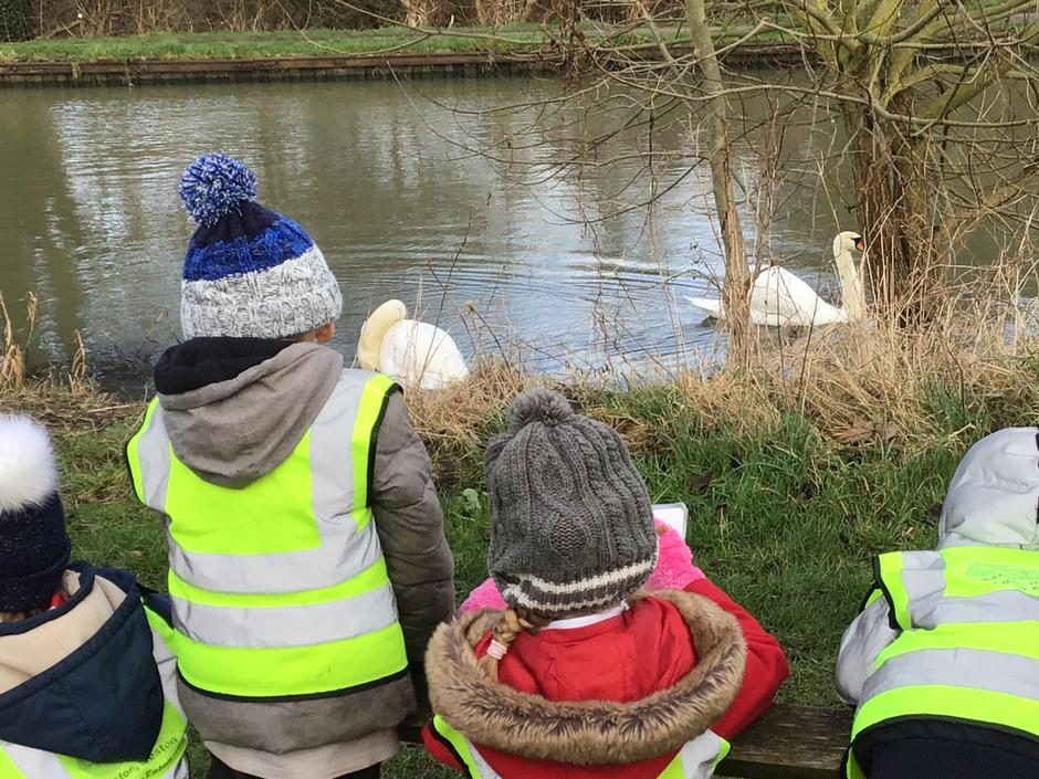 Walking to our local canal to see the swans.