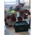 Our share of the poppies take pride of place
