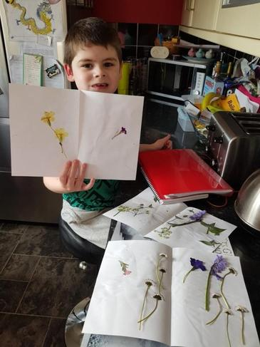 Pressing some flowers
