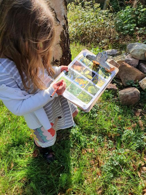 Searching for different types of trees.