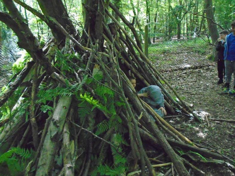 Building Shelters