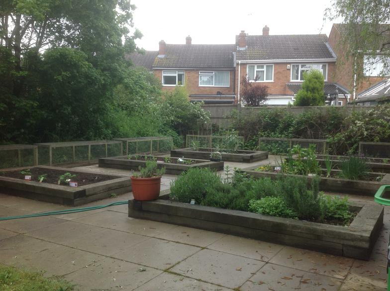 Our lovely Cranbourne allotment