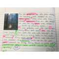 A wonderful short story by Raveena.  Check out the great punctuation!