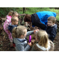 We were very excited to find so many minibeasts.