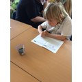 Investigating the best place to grow cress