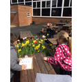 Looking for signs of spring around the school