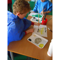 Class 2 - colour mixing - Creating tint and tone
