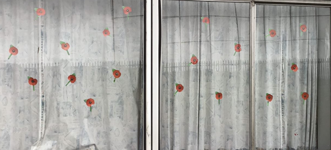 Dolphins made poppies and took part in the 2 minute silence.