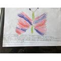 Elizabeth's WOW writing!