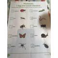 Matilda found lots of bugs in her garden!