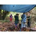 Building a den.