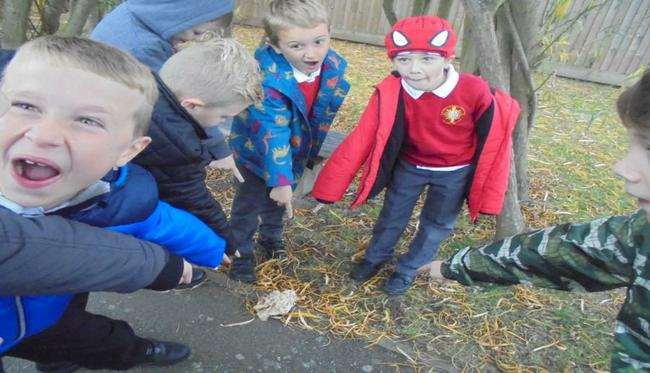 We found some evidence in our playground to suggest a dragon may have visited our school!