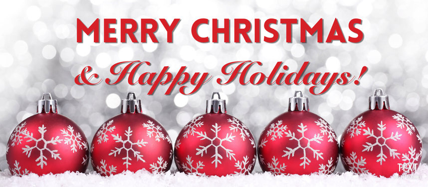 We hope you all have a wonderful winter break!  Take a look below for our Christmas videos