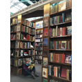 Ivy Campbell 2WS - Book shop in Alnwick