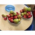 We had lots of apples.