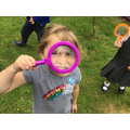 We used magnifying lenses to help us look closely.
