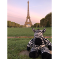 Bedtime Bear Ziggy went to France!